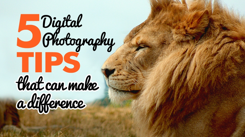 5 Digital Photography Tips That Will Make A Difference