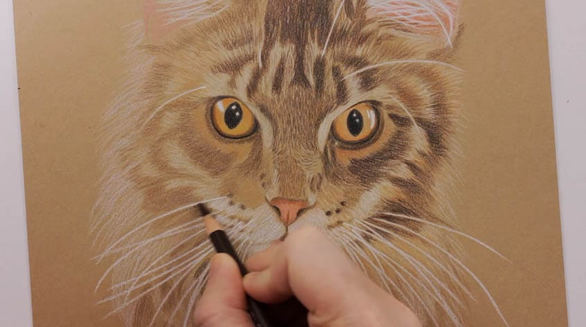 How To Draw Awesome White Whiskers In A Few Simple Easy Steps