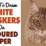 How To Draw White Whiskers On Coloured Paper